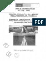 DIRECTIVAS 007.pdf