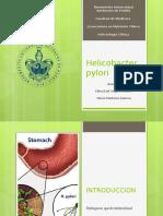 Helcobacter Pylori EXP