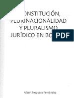 Constitucion Plurinacionalidad y Plurali