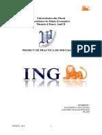 ING-Proiect-de-practica.doc