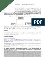 Pautas Trabajo Final Taller Formacion Afectiva Definitivo II 2016 Revisado 4 Noviembre 2016(1) (1)