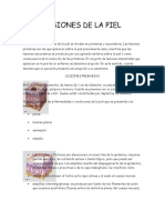Lesiones de La Piel (2)