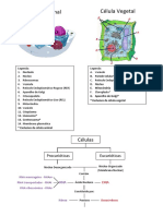 resumoglobalbiologia11_2