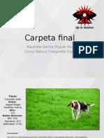 Carpeta final.pptx