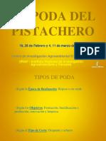 Curso Poda Del Pistachero 2016
