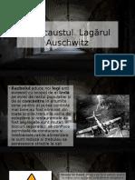 Holocaust Ul
