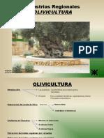Grupo Oliva