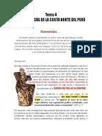 04 Los Mochicas de La Costa Norte Del Perú
