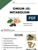 METABOLISME KROMIUM.pdf