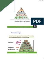 1°-C14-Piramides-ecológicas