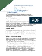 Clasificación del presupuesto.doc