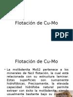 Flotaacion de Molibdeno