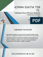 Diapositivas Norma TSB 75