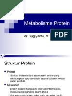 142976529 Metabolisme Protein