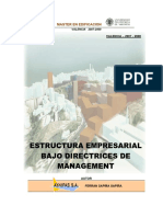 Pfm Gestion - Estructura Empresarial Bajo Directrices de Management