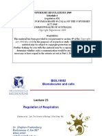 L23 Regulation of Respiration (1 Per Page)