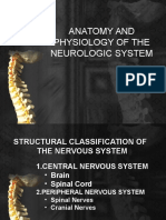 Assessment of the Neurologic System