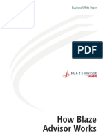 HNC Fair Isaac Blaze Advisor White Paper How To