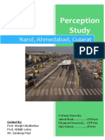 Perception Study of Narol.pdf