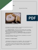 ROSQUILLAS Y ROSQUETES (1).pdf