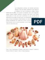 Carnes de ave.docx