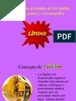 Lipidos Final (1)