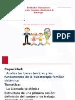 Estructura de Primera Sesion Sistemica