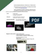 Apresentação, Modelação Tridimensional Da Acumulação de Biomassa, Peter Surovy