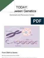 halloween genetics - genotypes and phenotypes