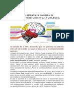 Los Traumas Infantiles Cambian El Cerebro y Predisponen a La Violencia