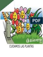 Cuidamos Las Plantas