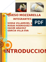 Exposicion Queso Mozzarella [Autoguardado]