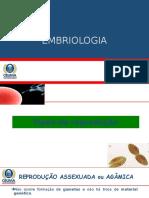 Embriologia_ Reprodução
