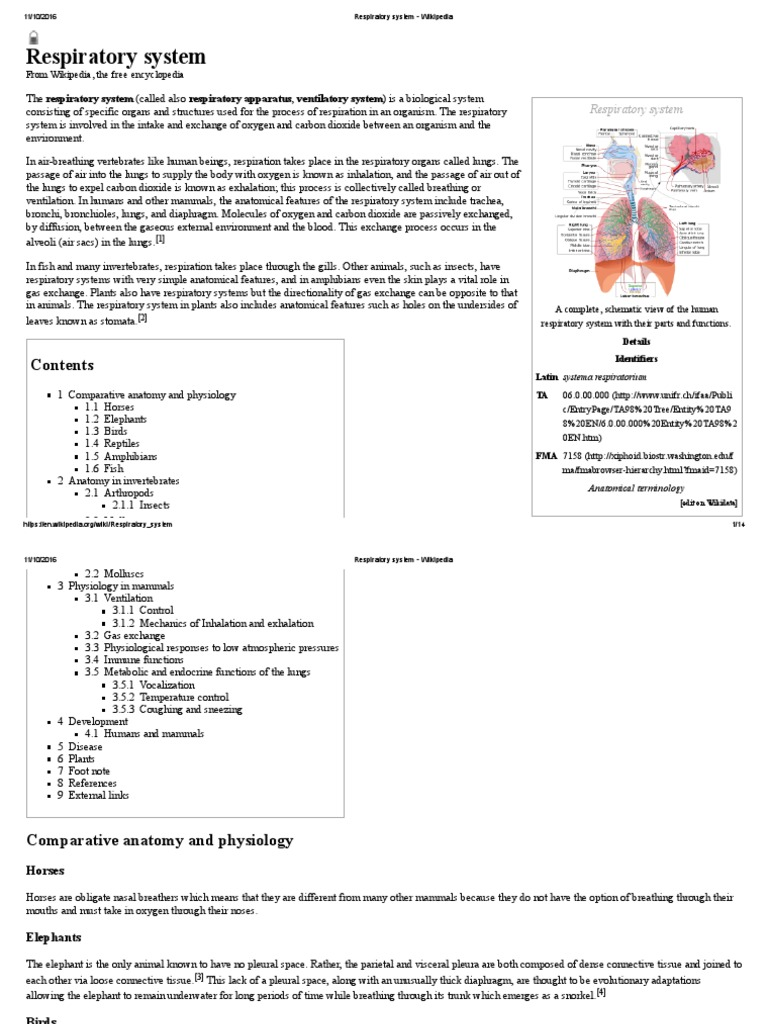 Atractivo Comparative Anatomy And Physiology Elaboración - Imágenes ...