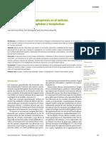 Alteraciones de La Sinaptogénesis en El Autismo