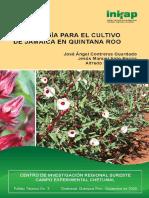 Jamaicaconforros.pdf