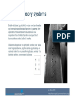 Plenary Sensory Systems Je Web 09