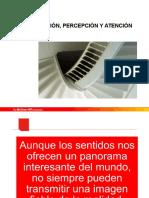 percepcion-sensacion_psico