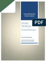 Ficha t Mazunte Demanda
