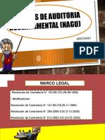 Completo NAGU 1