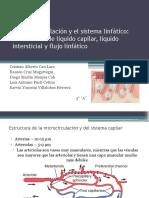 125066757-La-microcirculacion-y-el-sistema-linfatico.pptx