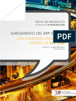 ERP-Social.pdf