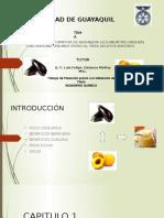 Presentacion Final Tesis Compota