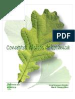 funciones de las partes de una planta.pdf