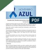 Novembro Azul | Artigo escrito por Rosi Feliciano