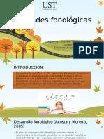 Dificultades Fonológicas 1 1
