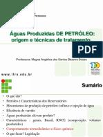AGUA PRODUZIDA.pdf