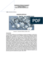 Diamantes Sintéticos