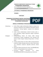 09. Sk Pemberian Informasi Kepada Masyarakat Tentang Kegiatan, Program Dan Pelayanan Puskesmas - Copy