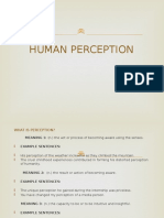 Human Perception